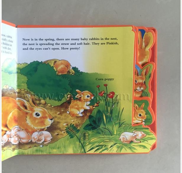 children's book printing china (4)